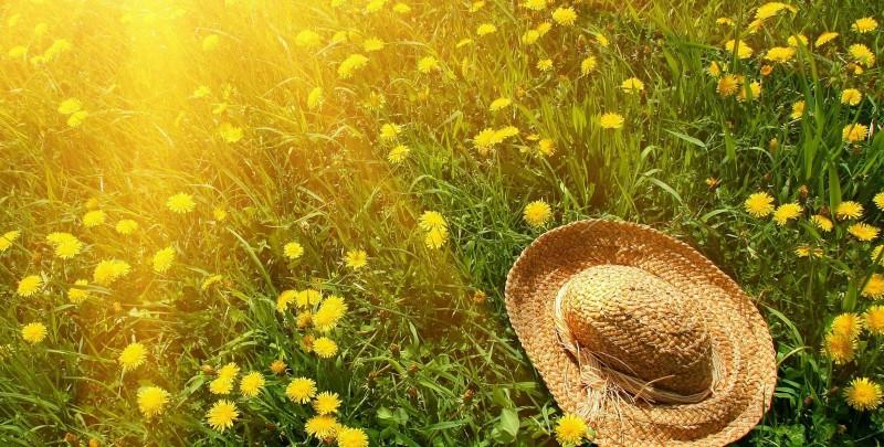 بهار این خانه را ترک میکند